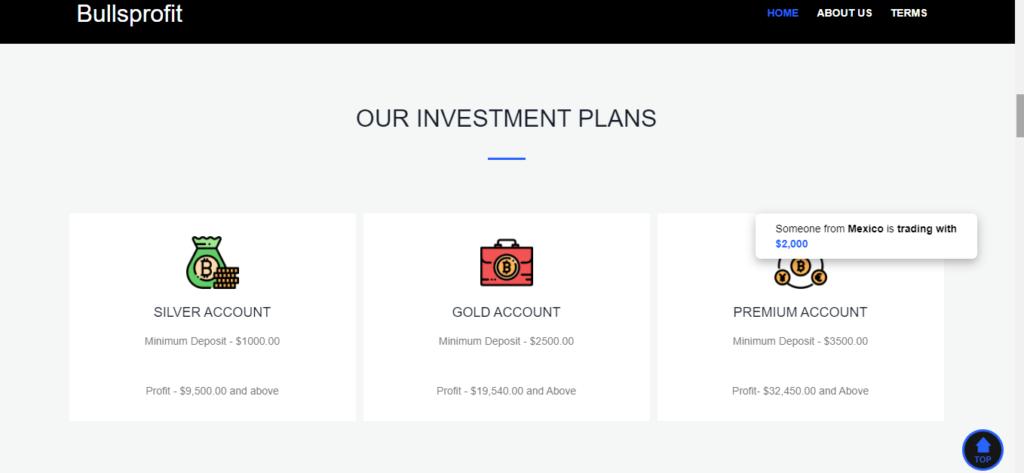 مراجعة Bullsprofit.online ، خطط Bullsprofit.online